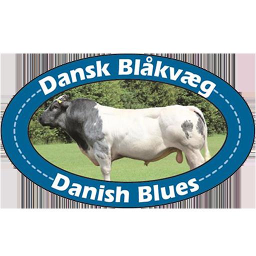 Tilladelse til at videregive oplysninger til dansk blåkvæg