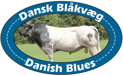 Dansk Blåkvæg